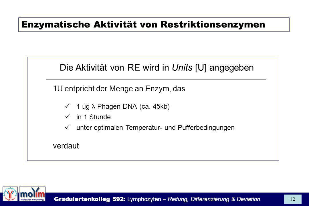 Die Aktivität von RE wird in Units [U] angegeben